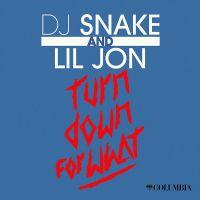 Let Me Love You av Dj Snake