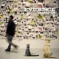 You av Evidence