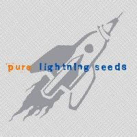 You Showed Me av Lightning Seeds