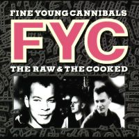 She Drives Me Crazy av Fine Young Cannibals