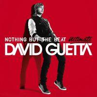 Love Don't Let Me Go av David Guetta
