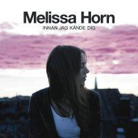 Jag Saknar Dig Mindre Och Mindre av Melissa Horn