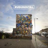 Feel The Love av Rudimental