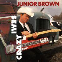 Where Has All The Money Gone av Junior Brown