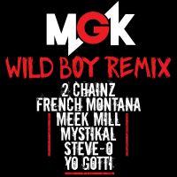 Wild boy remix 54c522c2a56a5